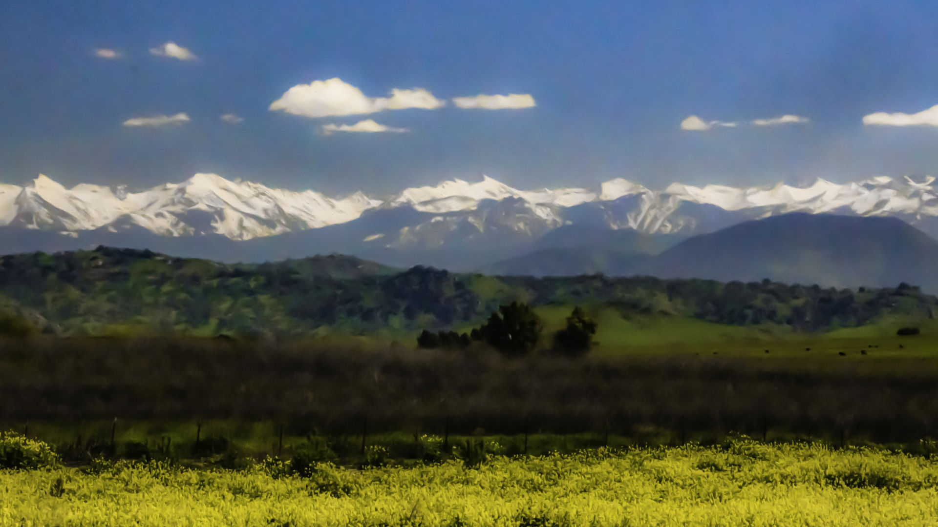 Snow Capped Sierra Nevada Mountains Over Meadow